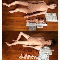 Multifunctional Nursing Training Manikin Model Mannequin Patient Female / Male