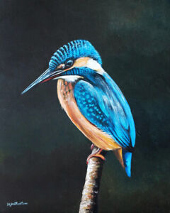 "Kingfisher Bird Original Oil Painting Sarah Featherstone, 10x8"" Wildlife Art New"