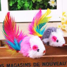 5 Pcs Neuf Amuisant Faux Souris Plume Chat Chien Animal Jouet à Gratter Jouer
