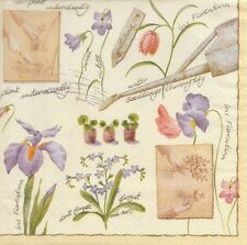 2 Serviettes en papier Iris Jardin Decoupage Paper Napkins Garden Flowers
