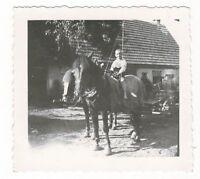 19/174 FOTO - JUNGER REITER - GESPANN - LANDWIRTSCHAFT FRÜHER -  PFERDE