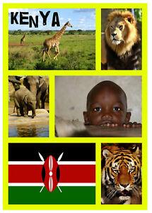 Kenya,Afrique - Souvenir Nouveauté Réfrigérateur Aimant - Gifts / Sites