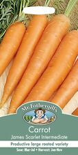 Mr Fothergills - Vegetable - Carrot - James Scarlet Intermediate - 2000 Seeds