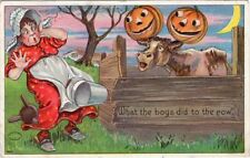 "HALLOWEEN POSTCARD BIEN, JULIUS SERIES 980 #9804, ""WHAT THE BOYS DID TO THE COW"""