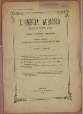 L'UMBRIA AGRICOLA 30 SETTEMBRE 1893 UMBRIA CITTA DI CASTELLO SAN GIULIANO VINO
