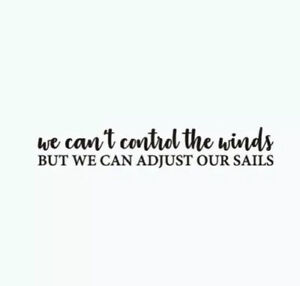 """NEW 23""""x8"""" We Can't Control Winds, We Can Adjust Our Sails Vinyl Wall Car Decal"""