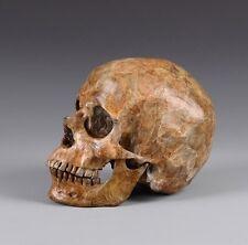 Handmade Bronze 1:1 Full Life Size Human Skull imitation marble