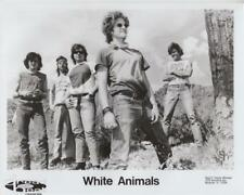 White Animals- Music Memorabilia Photo