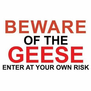 """Metal Sign -"""" BEWARE OF THE GEESE"""" LARGE 165mmx260mm"""