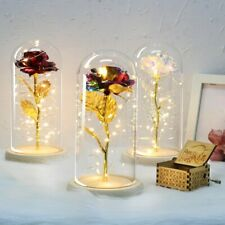 6 Colour Beauty And The Beast Red Rose In A Glass Dome On A Wooden Base For Vale
