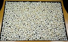 Freshwater White Pearl Loose Gemstone Wholesale Lot 5000 Ct Natural Round Shape