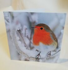 Pack Of 10 Charity Christmas Xmas Cards Frosty Robin