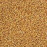 Miyuki Size 15/0 Round Seed Beads 15-982 Galvanised Gold 8.2g (N15/1)