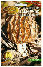 TRUE MOREL MUSHROOMS GROW KIT Сморчок SEED SPORES PACK ORGANIC FUNGI MYCELIUM