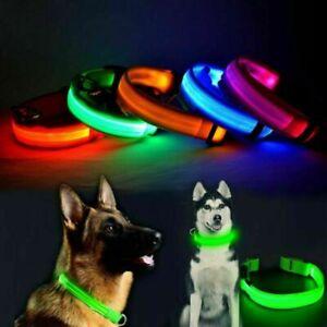 USB Rechargeable LED Dog Pet Collar Flashing Luminous Safety Night Lighting Up