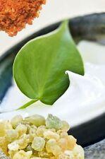 Natural Boswellia & Commifora Soothing Cream 50ml
