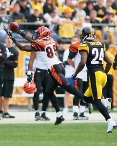 CHAD OCHOCINCO JOHNSON 8X10 PHOTO CINCINNATI BENGALS PICTURE NFL FOOTBALL