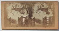Suisse Swiss Il Leone Da Lucerna Foto Stereo di Carta Vintage Verso 1865