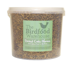 Norfolk Feeds Dried Calci Worms 5ltr - Wild Bird Food 5 litre Bucket - Treat Tub