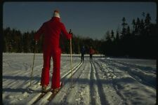 151075 CROSS COUNTRY SKIING A4 FOTO STAMPA