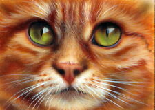 Original Acrylic Painting Cat Art by Christina Schulte