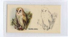 (Ja9565-100)  PHILLIPS,BIRD PAINTING,BARN-OWL,1938#39