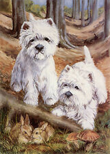 """WEST HIGHLAND WHITE WESTIE DOGS ART LIMITED EDITION PRINT - """"In the Beech Wood"""""""
