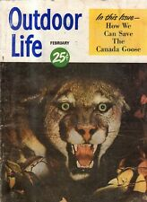 1950 Outdoor Life - February - Canada goose; Brant; Pike;The buffalo kept coming
