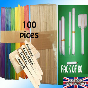 Seed Plant Labels Different Sizes Plastic potting seedlings Natural Wood sticks