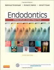 Endodontics: Principles And Practice 5th Int'l Edition