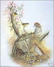 Woodland Songster 8x10 Paper Tole 3D Decoupage Kit
