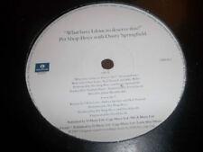 "Pet Shop Boys Promo 12"" Single Records"