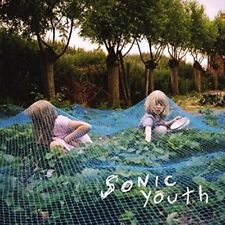Sonic Youth Murray Street LP Vinyl 7 Track 180 Gram Repress in Gatefold Sleeve