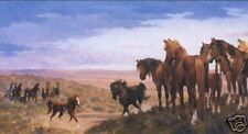 Double Dare by Jim Rey Western Wild Horse S/N Limited Edition Fine Art Print