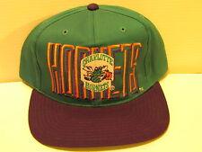 1990's NBA CHARLOTTE HORNETS SNAP BACK VINTAGE CAP NEW