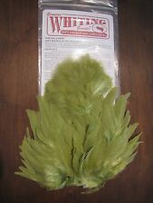 Fly Tying Whiting Rooster Soft Hackle w/Chickabou Olive #H