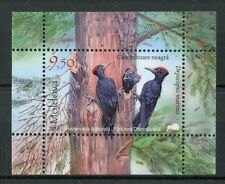 Moldova 2018 MNH Fauna Black Woodpecker 1v M/S Woodpeckers Birds Stamps
