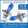 12V HOD XENON H4 60/55W 5500K SUPERWHITE HEADLIGHT CAR/AUTO WHITE BULBS/GLOBES