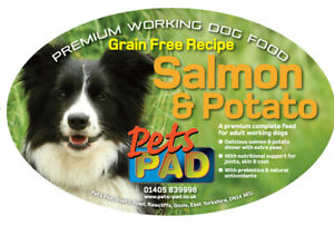 Premium Complete Salmon & Potato Dog Food, Grain Free, 15kg