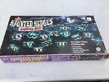 RARE Halloween Eyeballs Haunted Hedges Flashing Lights MR CHRISTMAS