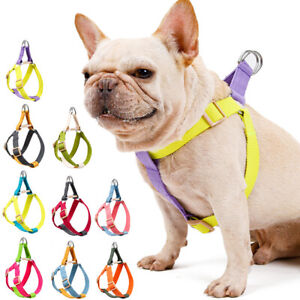 Adjustable Pet Dogs Chest Harness Belt Buckle Straps Puppy Cat Walking Leash