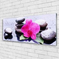Glasbilder Wandbild Druck auf Glas 125x50 Blume Steine Kunst