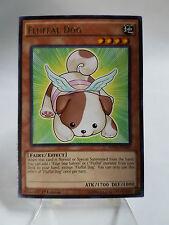 Yu-Gi-Oh Fluffal Dog NECH-EN017 LP Rare X3 1st