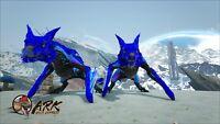 ark survival evolved pc pve Deep Blue Mana Managarmr Pair