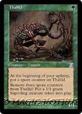 THALLID Time Spiral Timeshifted MTG Green Creature — Fungus