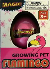 Hatching Flamingo Egg Growing Pet