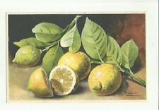 137904 stupenda cartolina artistica frutta di s. bonelli