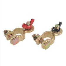 Schraubklemmen Plus und Minus 12V 2er-Pack Polklemmen für Autobatterien