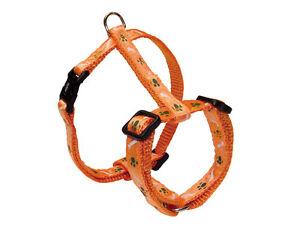 """Nobby Geschirr """"Mini"""", 20-35 cm  orange  Chihuahua Yorkshire Hund Welpe"""