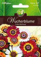 """Wucherblume """" Frohe Mix """", Seme, Crisantemo Carinatum, Fiore, Chrestensen, PG2"""